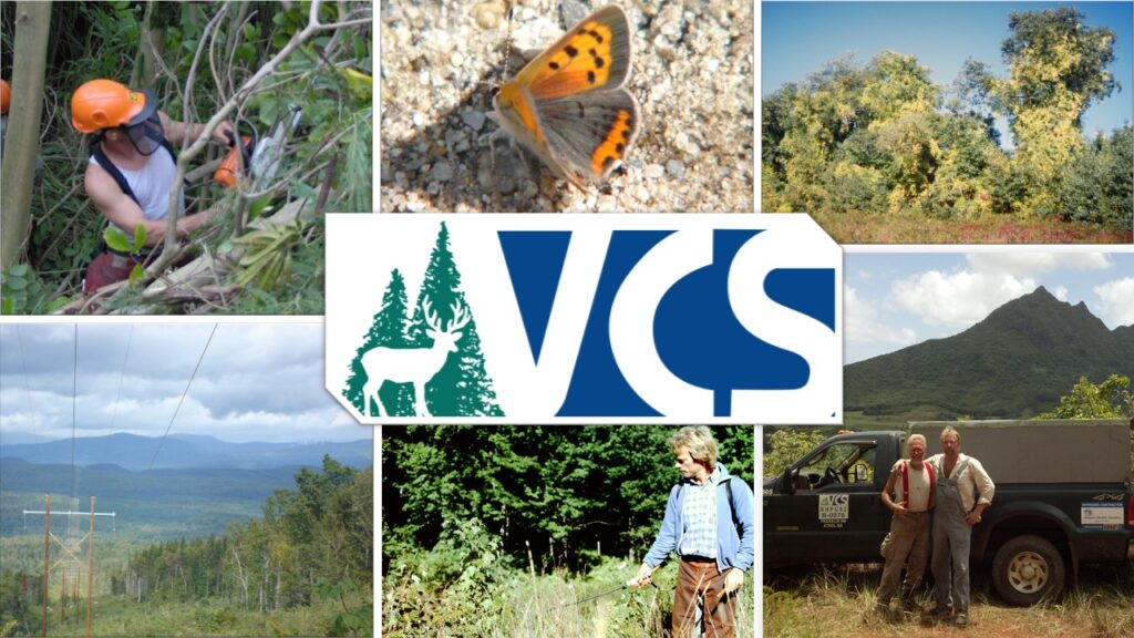 Vegetation Control Service. Serving the community for 45 years